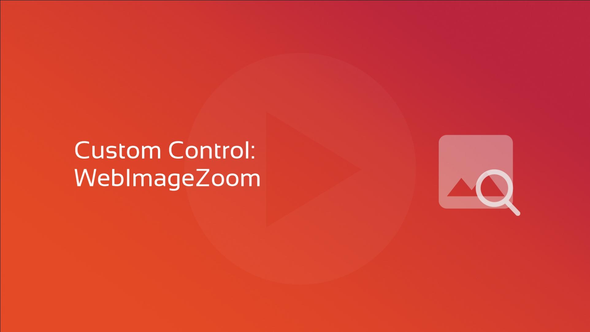 2020-02-24 Custom Control WebImageZoom OG